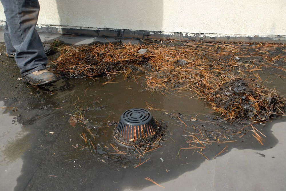 Flat Roof Drains   Roofs Are Compromised Without Maintenance