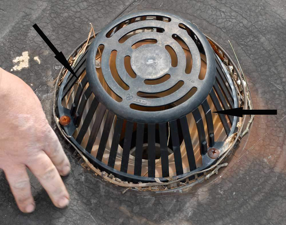 Plastic-strainer-or-dome-for-drains