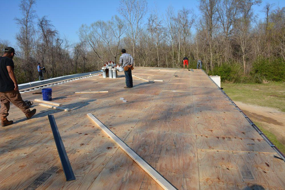 Plywood installed over a metal roof